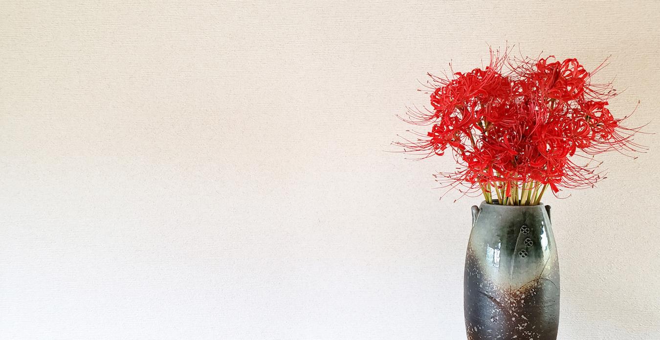 Shuubun no hi, Amaryllis du Japon, equinoxe d'automne
